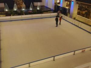 Arena Ice Skate